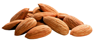 Almond Transparent PNG Image, Free Download