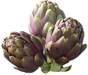 Artichokes Vegetable Meal Cut Out