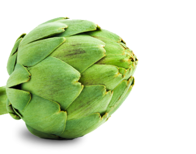 Artichokes Local Food Transparent PNG Images