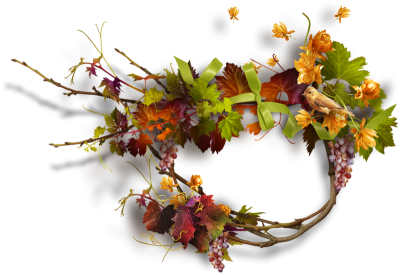 Autumn, Spring, Winter, Seasons, Leaf, Png PNG Images