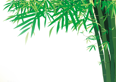 Bamboo Png Images Free Download PNG Images