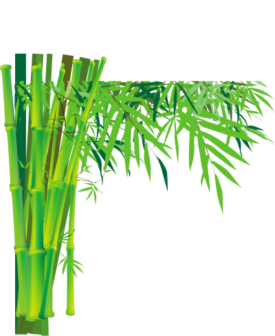 Green Long Stick Of Bamboo Trees PNG, Grass, Chichewa, Rapid Growth