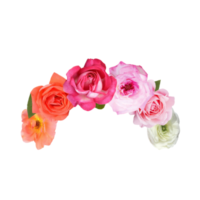 Band Flower Cut Out Png PNG Images