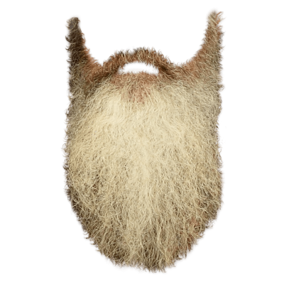 Beard Long Photos PNG Images