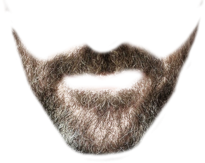 Beard Transparent Picture PNG Images
