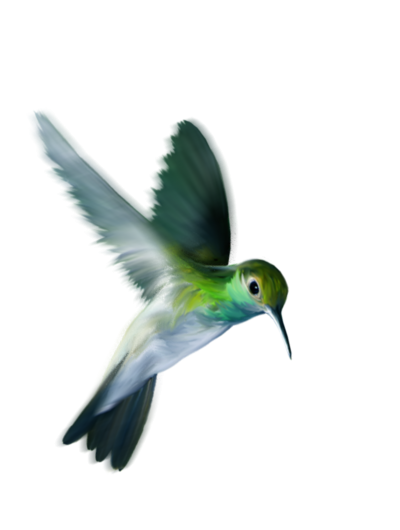 Green Flying Bird Cartoon Clipart, Wing, Beaked, Feather PNG Images