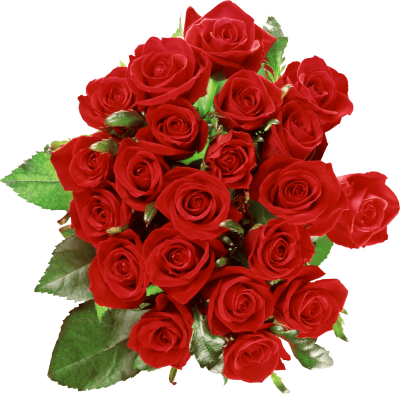 Red Rose Bouquet Pictures PNG Images