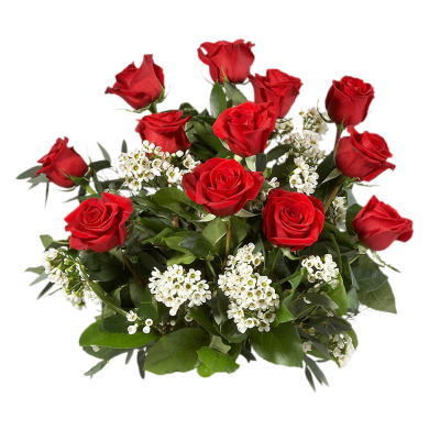 White And Red Rose Bouquet Picture PNG Images