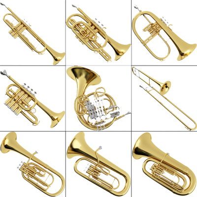 Brass Instruments  .pixsharkm   Images Galleries