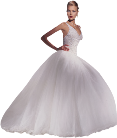 Bride Dress Png Photo