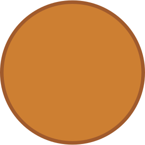 Bronze Medal Blank Png