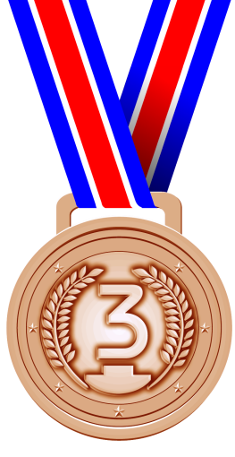 Ni, Si, And Self Delusion Bronze Medal Png