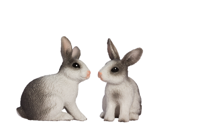 Bunny Accessories Transparent Png PNG Images