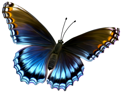 Download Amazing Butterfly Png Image PNG Images