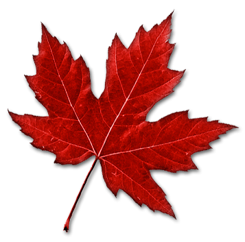 Red Canadian Maple Leaf Png PNG Images