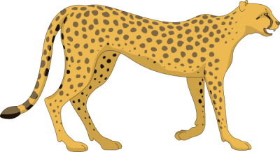 Cheetah Hd Photo Clipart PNG Images