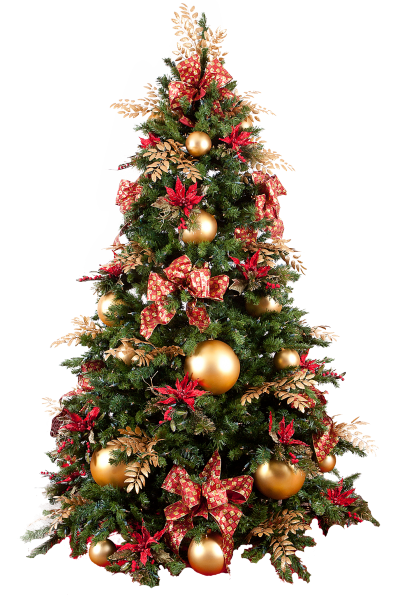Christmas Tree Photo Png HD