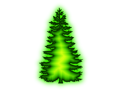 Photo Christmas Tree HD Png