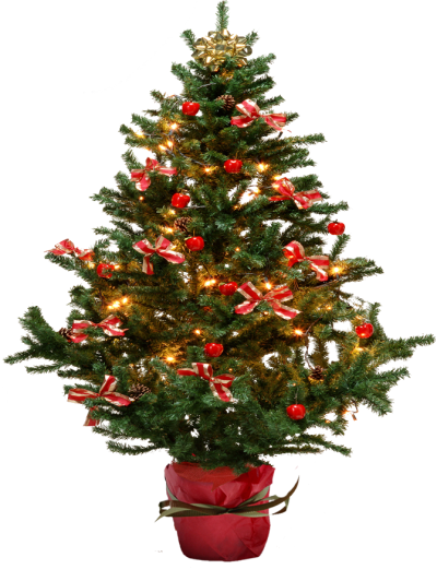 Simple Christmas Tree 20 PNG Images