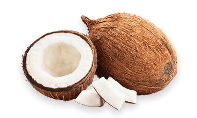 Coconut Cut Out PNG Images