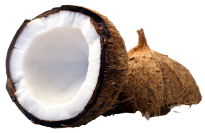 Coconut Transparent Picture PNG Images