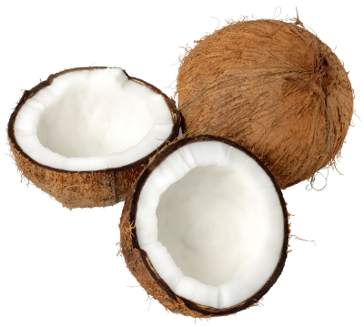 Coconut Best Png PNG Images