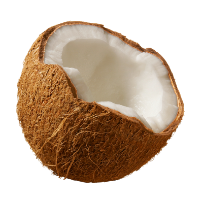 Coconut Simple PNG Images