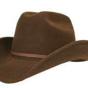 Cowboy Hat Transparent Image   PNG Images