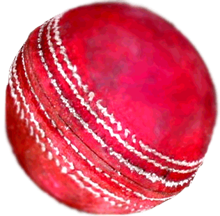 Cricket Ball Free Download