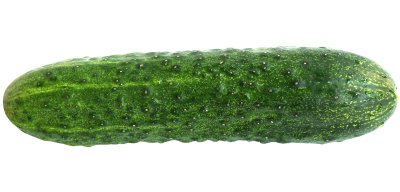Cucumber Made ın Turkey Photo PNG Images