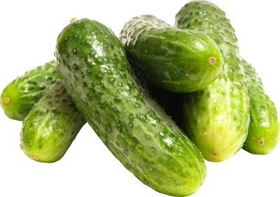 Pickling Cucumber HD Photo PNG Images
