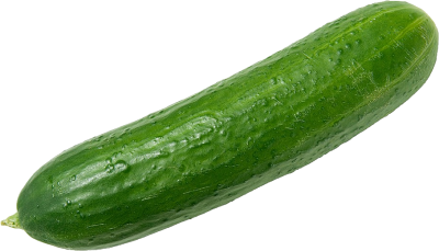 Usa Cucumber Photo PNG Images