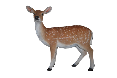 Deer Female, Doe PNG Icon PNG Images