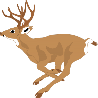 Deer Running Clipart PNG Photos PNG Images