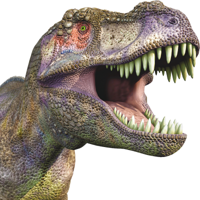 Dinosaur Wonderful Picture Images PNG Images