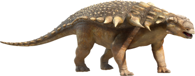 Dinosaur Clipart Photo PNG Images