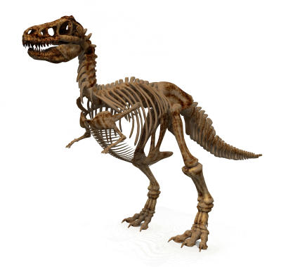 Dinosaur HD Image PNG Images