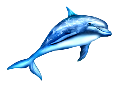 Dolphin That Shines Light On it Free Png PNG Images
