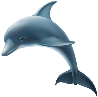 Great Realistic Blue Dolphin illustration Hd Transparent PNG Images
