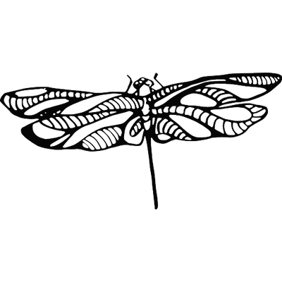 Dragonfly Tattoos Free Download PNG Images
