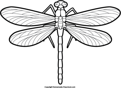 Dragonfly Tattoos Free PNG PNG Images