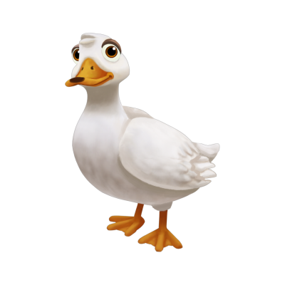 White Duck Free Download PNG Images