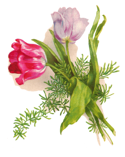 Easter Flower Free Download Transparent