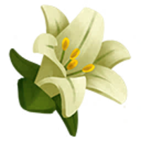 Easter Flower Amazing Image Download PNG Images
