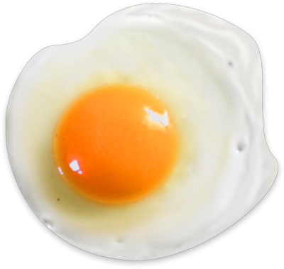 Egg Photos PNG Images