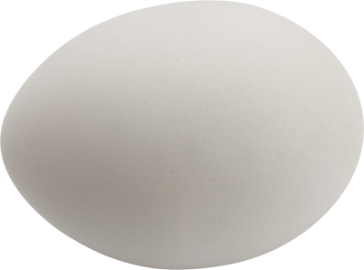 Egg Transparent Image PNG Images