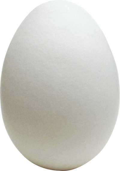 Egg PNG Picture PNG Images