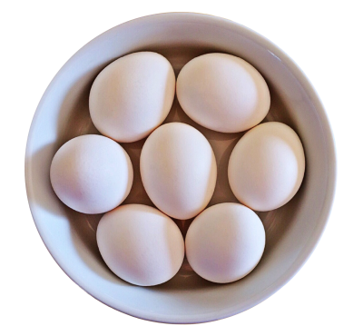 Egg Picture PNG Images