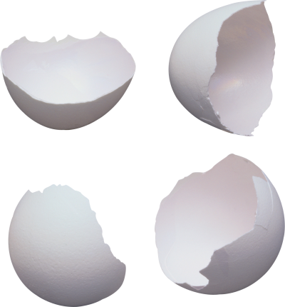 Egg Transparent PNG Images