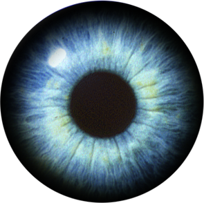 Eye Best Png PNG Images